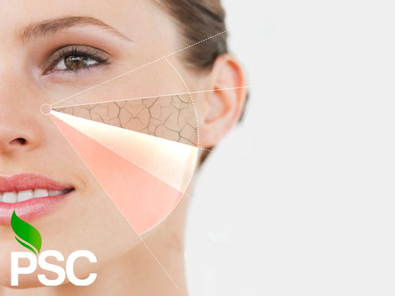 کارگاه آموزش مراقبت از پوست و مو Skin Care
